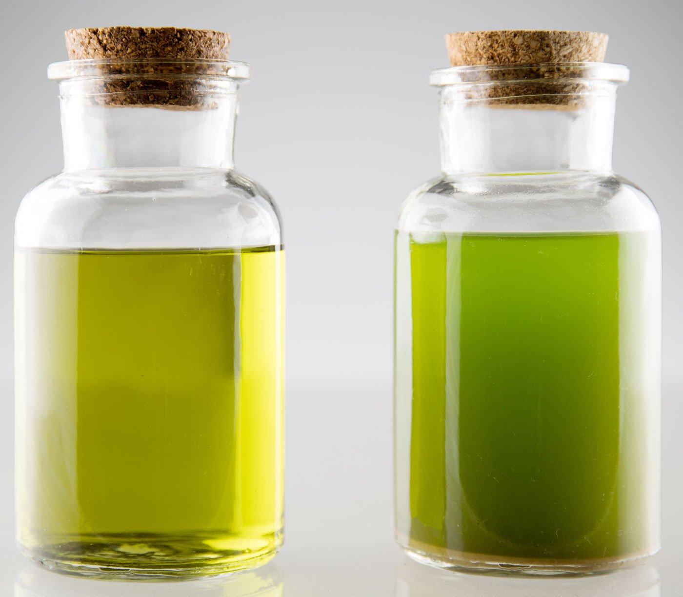 Co2 Ethanol